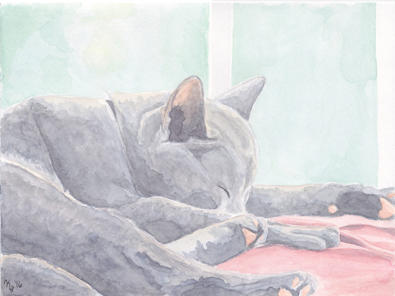 Watercolor Painting Gray Cat Sleeping Window