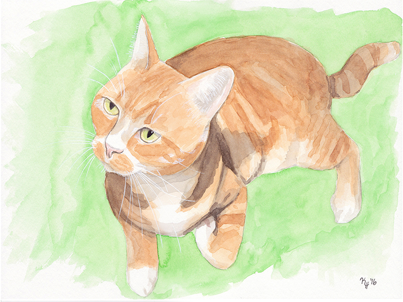 Watercolor Painting Orange Tabby Cat Lying Down Looking Up