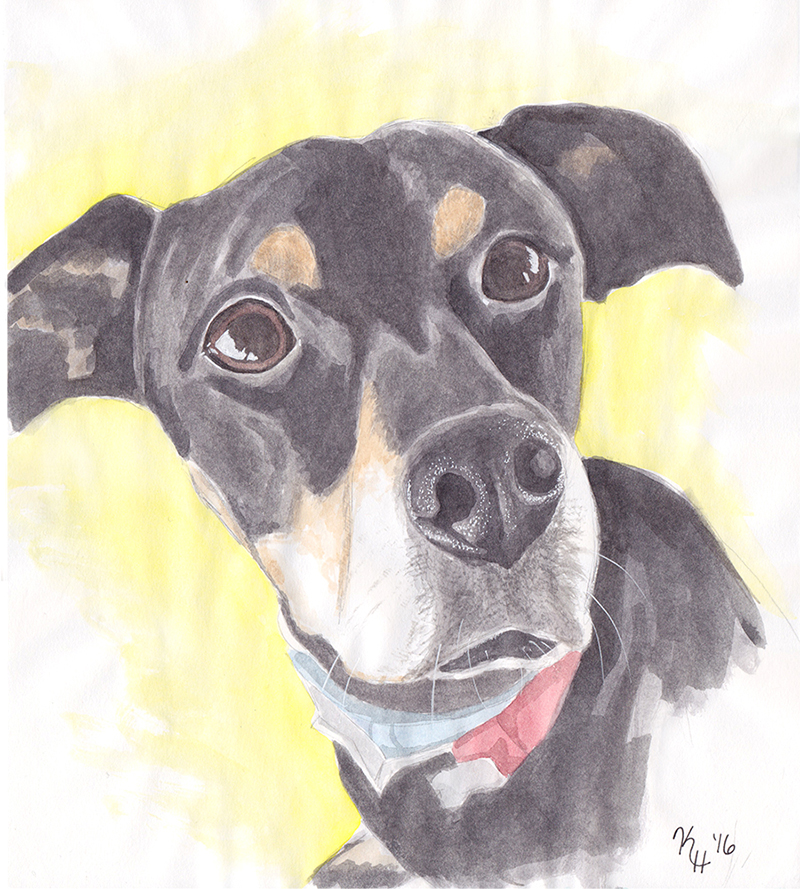 Watercolor Painting Black Tan Dog Looking Up