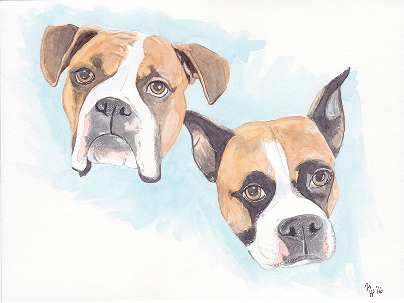Watercolor Painting Two Tan Colored Dog Boxer Portrait