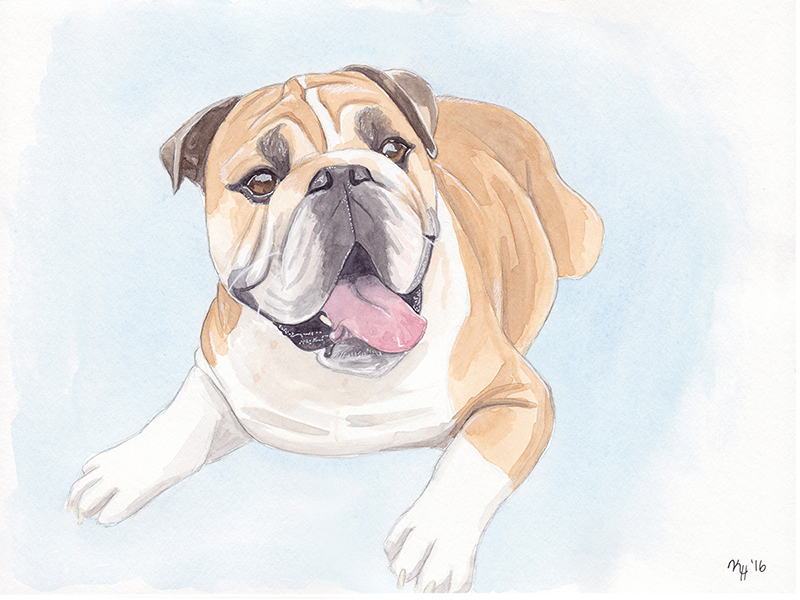 Watercolor Painting Bulldog Lying Down Tongue Out